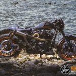 Harley Davidson Roadster BombTrack